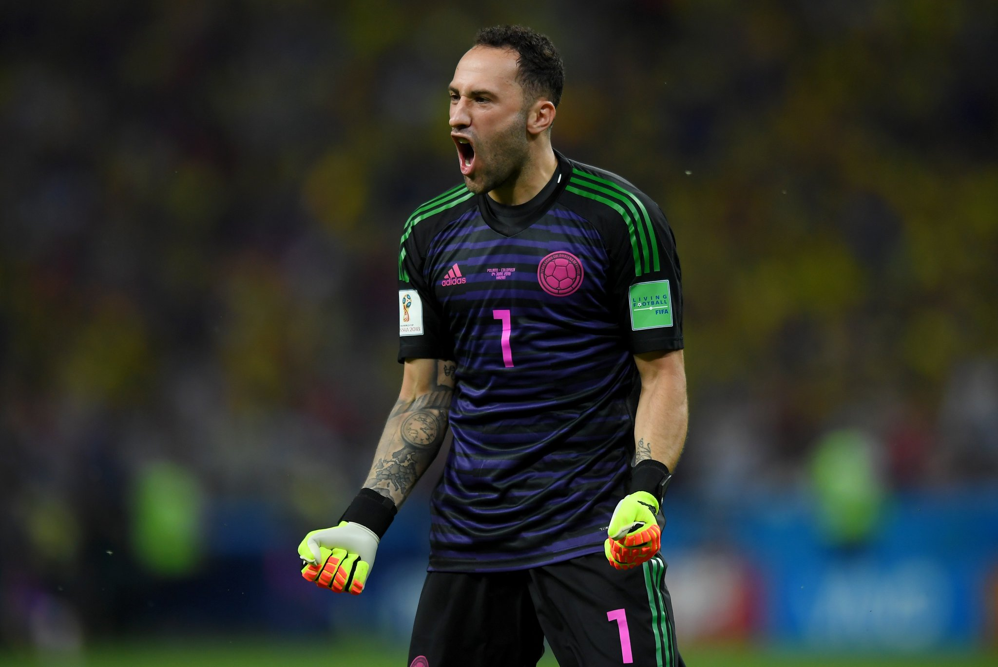 David Ospina at WORLD CUP 2018